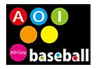 AOIベースボールスクール 野球スクール・野球塾・野球教室